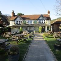 A25 dog-friendly country pub and dog walk, Surrey - Surrey dog-friendly pub and dog walk.JPG