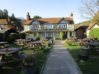 A25 dog-friendly country pub and dog walk, Surrey - Driving with Dogs