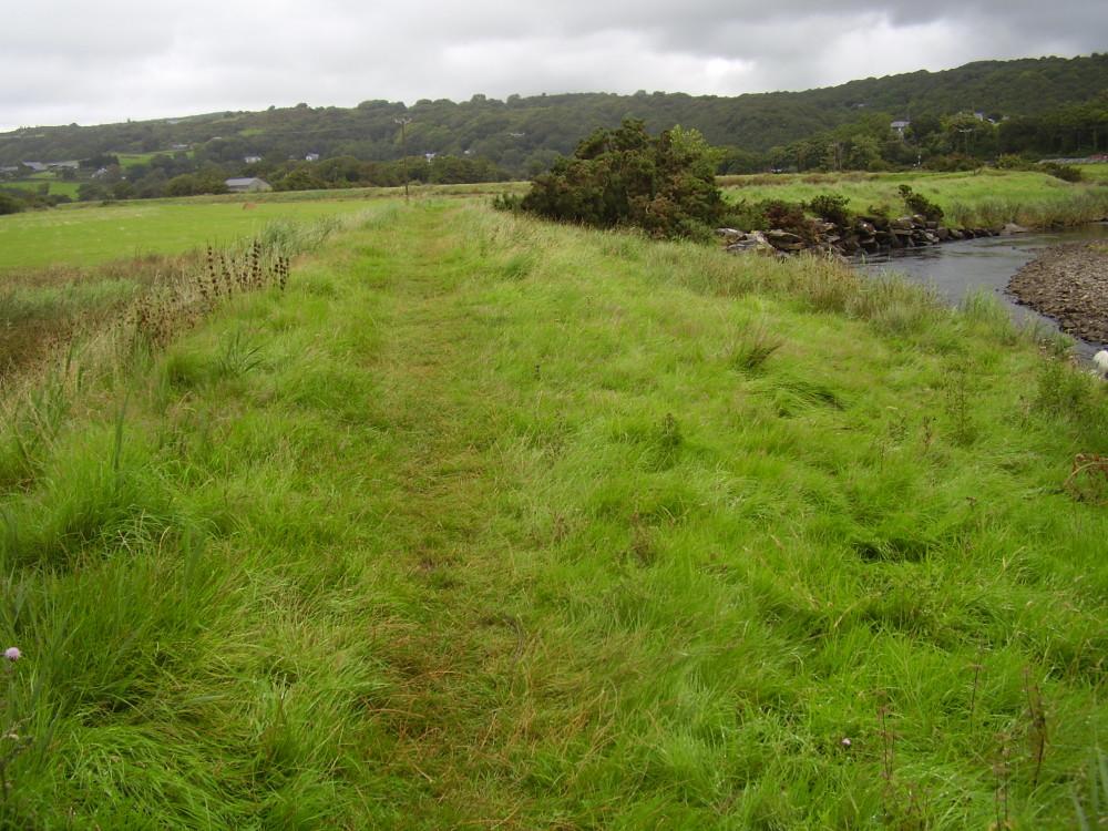 A496 Llanbedr dog walk, near Harlech, Wales - Dog walks in Wales
