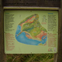 Dog-friendly beach and woodland walk, Anglesey, Wales - Dog walks in Wales