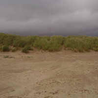Dog-friendly beach near Porthmadog, Wales - Dog walks in Wales