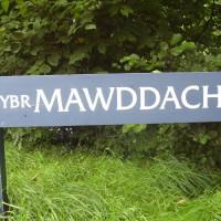 Dolgellau dog walk, Wales - Dog walks in Wales
