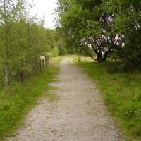 Heritage dog walk near Wrexham, Wales - Dog walks in Wales