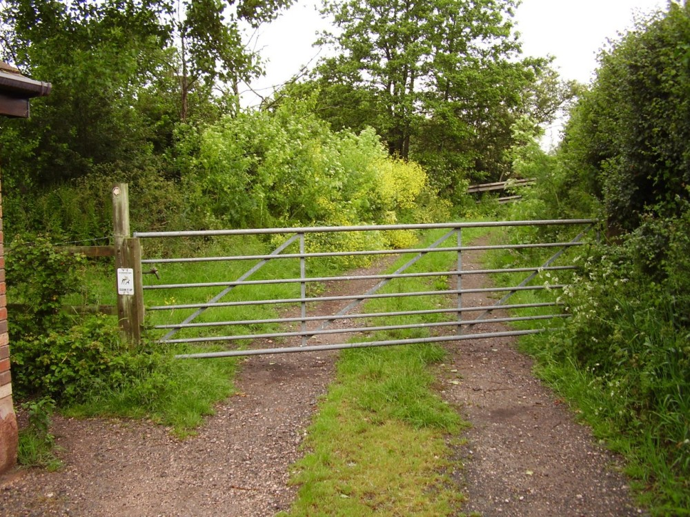 M5 Junction 30 dog walk from Clyst St Mary, Devon - Dog walks in Devon