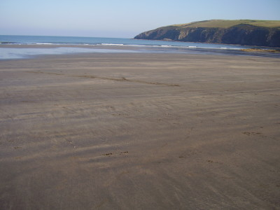 Newport dog-friendly beach in Pembrokeshire, Wales - Driving with Dogs