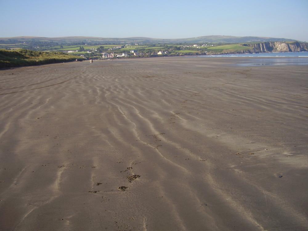 Newport dog-friendly beach in Pembrokeshire, Wales - Dog walks in Wales