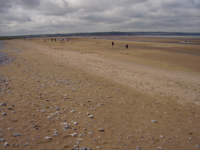 Red Wharf Bay dog-friendly beach, Anglesey, Wales - Driving with Dogs