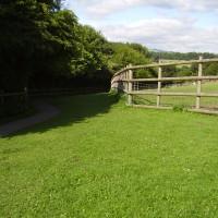 Country park dog walk near Wrexham, Wales - Dog walks in Wales