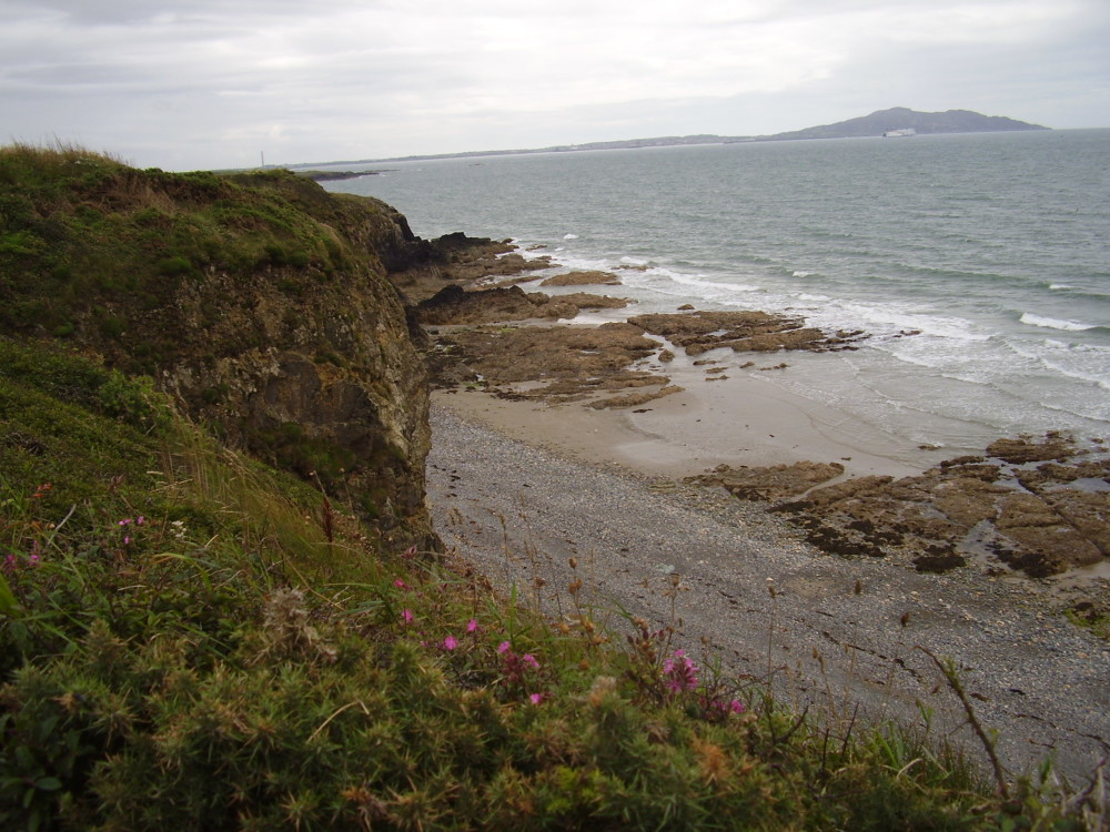 Porth Swtan dog-friendly beach, Anglesey, Wales - Dog walks in Wales