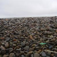 Tal-y-Bont dog-friendly beach near Barmouth, Wales - Dog walks in Wales