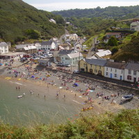 Country dog walk, pubs and dog-friendly beach, Wales - Dog walks in Wales