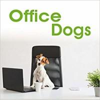 office dogs.jpg