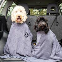 PawDaw dogs.jpg