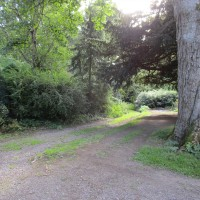 Garden ramble with the dog, Yorkshire - Yorkshire dog walk