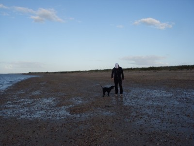 Bradwell dog-friendly beach, Essex - Driving with Dogs