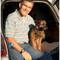 Alpha Dog Behaviour, Worcestershire - Image 1