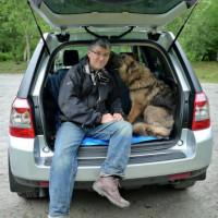 Alpha Dog Behaviour, Worcestershire - Image 2