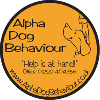 Alpha Dog Behaviour, Worcestershire - Image 3