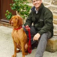 Alpha Dog Behaviour, Worcestershire - Image 4