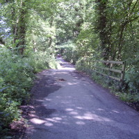Reservoir dog walk near Chesterfield, Derbyshire - Image 1