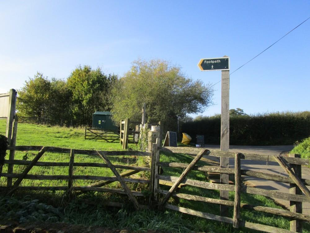 M2 Jct 5 and M20 Jct 8 dog-friendly pub and dog walks, Kent - Kent dog-friendly pubs with dog walks