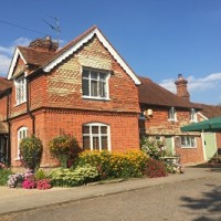 A29 Low Weald walkies and dog-friendly pub, West Sussex - Sussex dog-friendly pub and dog walk