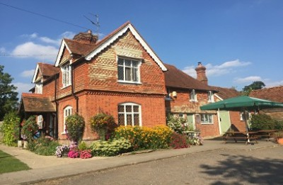 A29 Low Weald walkies and dog-friendly pub, West Sussex - Driving with Dogs