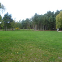Sherwood Pines Forest Park dog walk, Nottinghamshire - Dog walks in Nottinghamshire