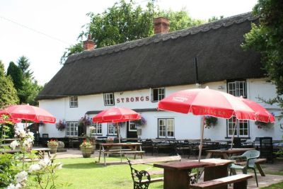 A354 dog-friendly pub and dog walk in a picturesque village, Hampshire - Driving with Dogs