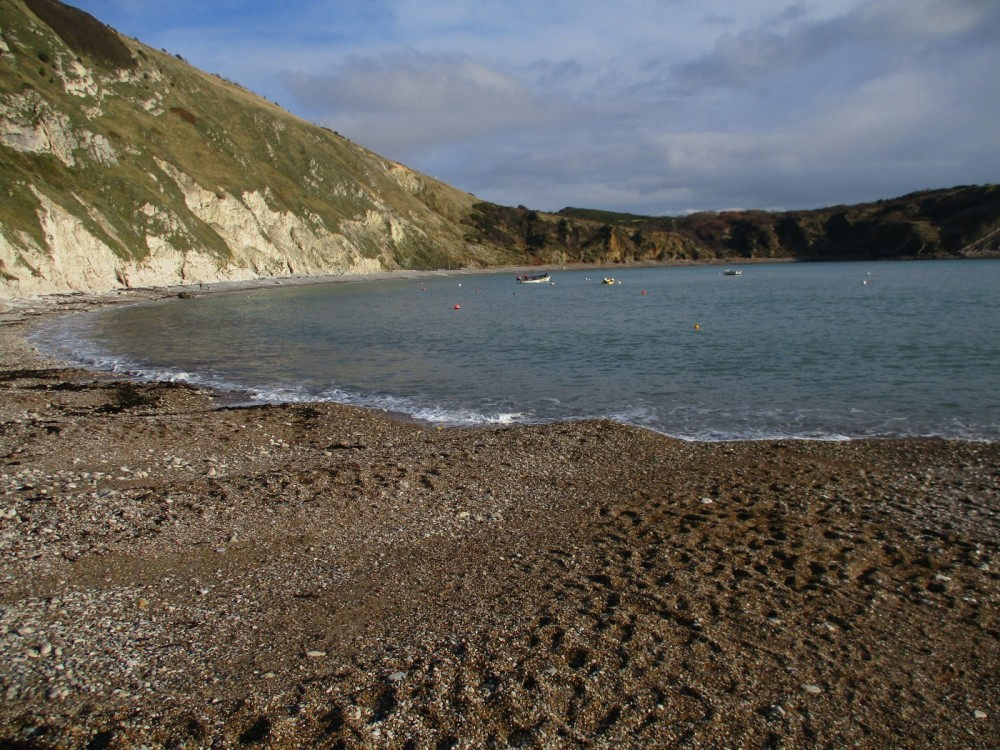 Lulworth Cove dog-friendly beach, walk and pub, Dorset - IMG_0536.JPG