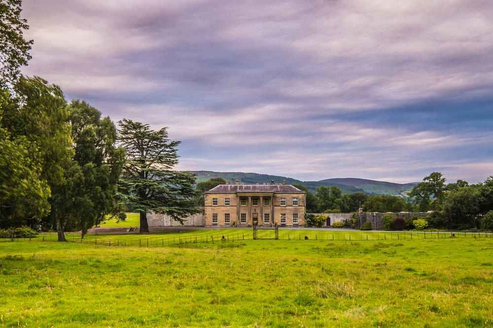 A5 Country estate dog walks with cafe, shop and camping, Wales - A5 dog walk and dog-friendly cafe.jpg