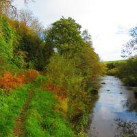River walk and dog friendly pub - A199, Scotland - Dog-friendly pub and dog walk near Dunbar