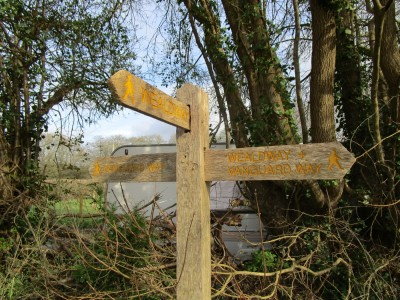 Wealdway dog walk and dog-friendly pub, East Sussex - Driving with Dogs