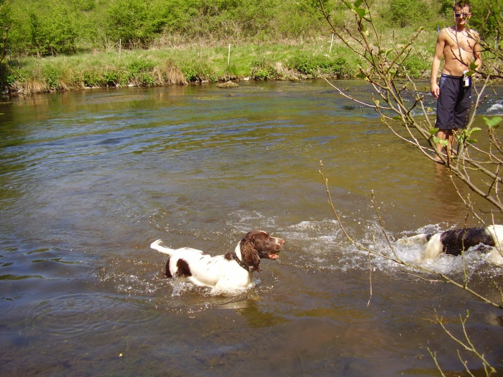 Dog swimming place by the A6 Derbyshire.JPG