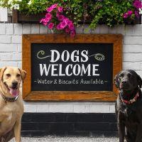 M1 dog-friendly pub and dog walk near Milton Keynes, Bedfordshire - Dog-friendly pub and dog walk near Milton Keynes