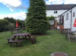 A39 Dog-friendly pub and dog walk near Street, Somerset - Driving with Dogs