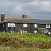 Sizewell dog-friendly beach, Suffolk - Suffolk dog-friendly beach