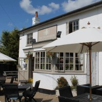 M3 Junction 4A dog walk and dog-friendly pub, Hampshire - Hampshire dog-friendly pub and dog walk