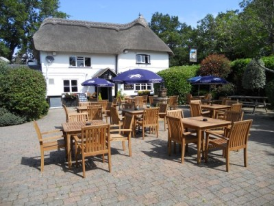 A35 dog-friendly pub, Hampshire - Driving with Dogs