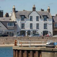 Stonehaven harbour pubs - dog-friendly, Scotland - Dog-friendly pub in Stonehaven