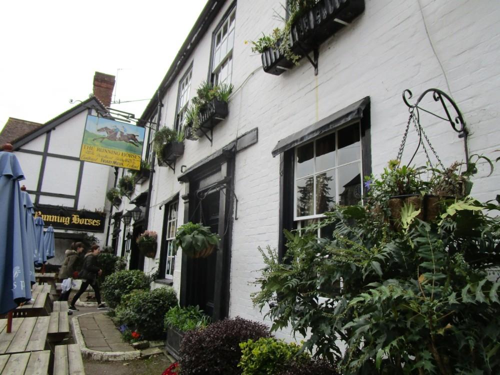 A24 dog-friendly inn and dog walk near Dorking, Surrey - Surrey dog walks and dog-friendly pubs.JPG