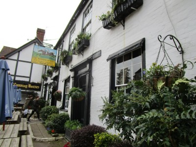A24 dog-friendly inn and dog walk near Dorking, Surrey - Driving with Dogs