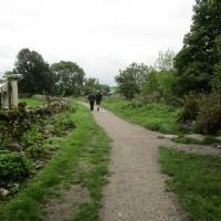 Pennine Way dog-friendly pub and walk, Yorkshire - Yorkshire dog walk and dog-friendly pub