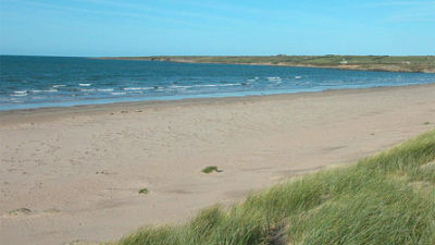 Anglesey dog-friendly pub and beach walks, Wales - Driving with Dogs