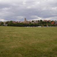 M40 Junction 15 dog walk and dog-friendly pub, Warwickshire - Dog walks in Warwickshire