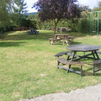 A438 Dog-friendly pub and dog walk near Birtsmorton, Worcestershire - Dog walks in Worcestershire