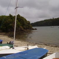 Dog walk with dog-friendly pub near Falmouth, Cornwall - Dog walks in Cornwall