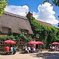 A420 dog walk and pub near Abingdon, Oxfordshire - Dog walks in Oxfordshire