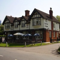 A1M Junction 7 dog walk and dog-friendly pub, Hertfordshire - Dog walks in Hertfordshire