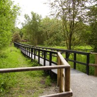 A1M Junction 42 dog walk and a cafe, Yorkshire - Dog walks in Yorkshire